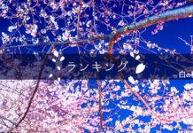 白の桜ランキング